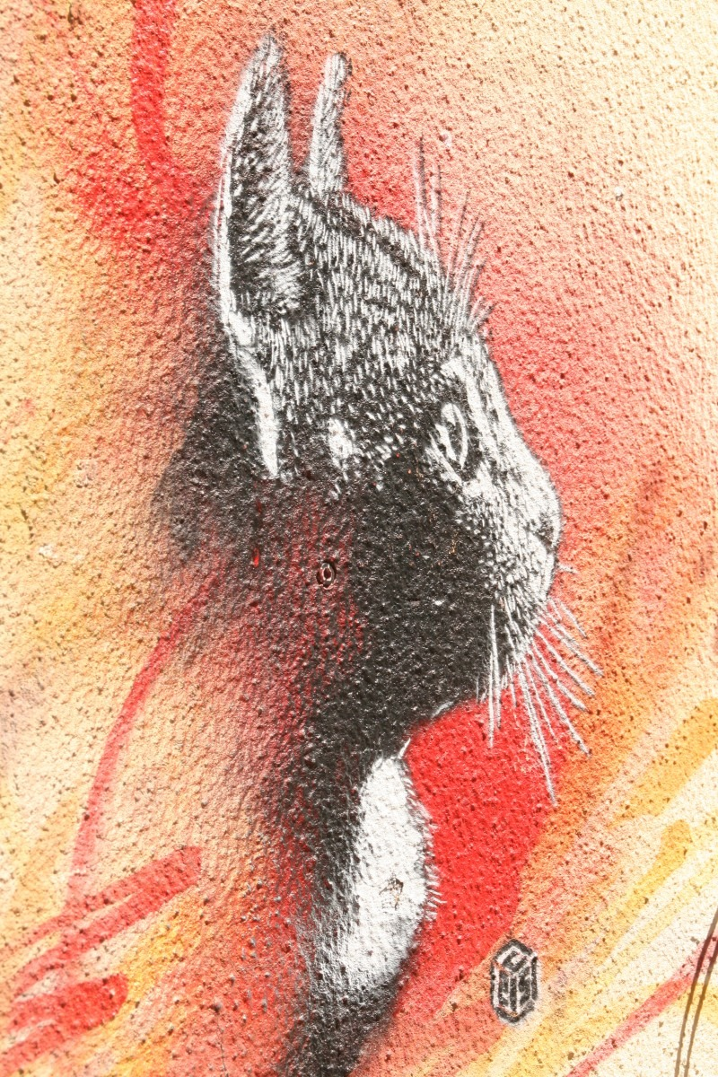 Katzen-Graffity in Lissabon