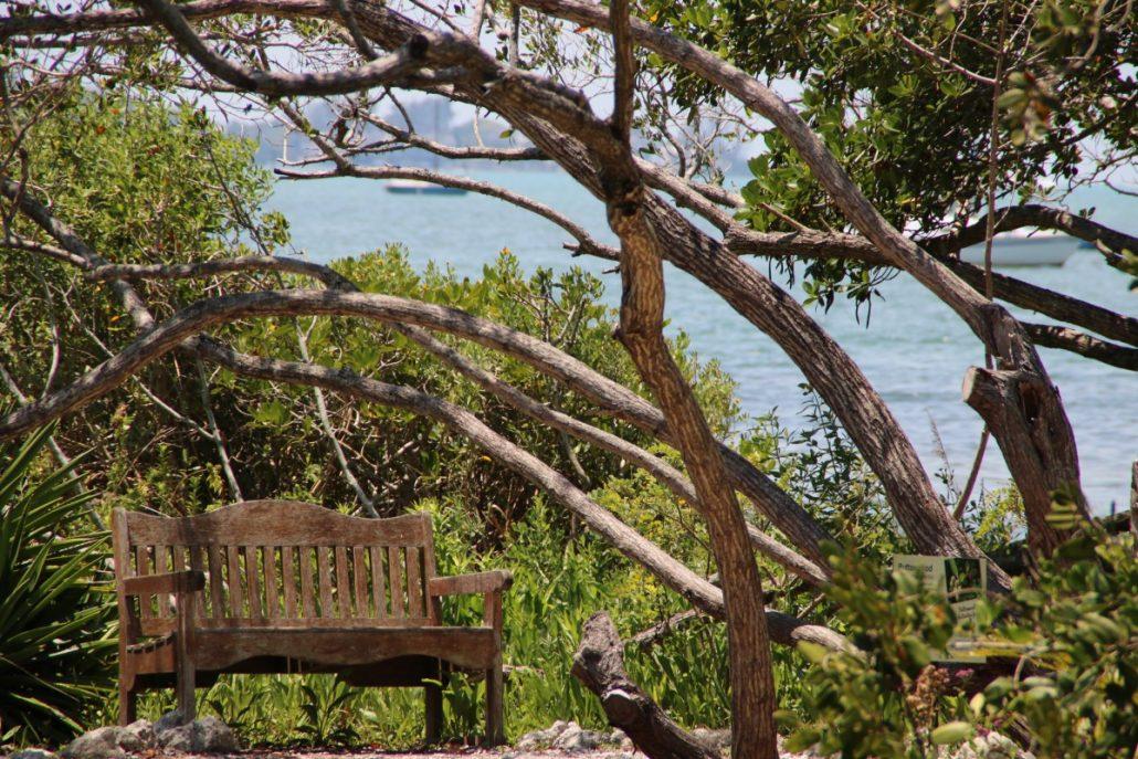 lauschiges Plätzchen im Botanischen Garten Mary Selbys Sarasota