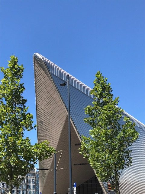 Teil des Daches von Rotterdam-Centraal, dem Hauptbahnhof