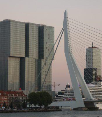 Kop van Zuid und Erasmusbrücke