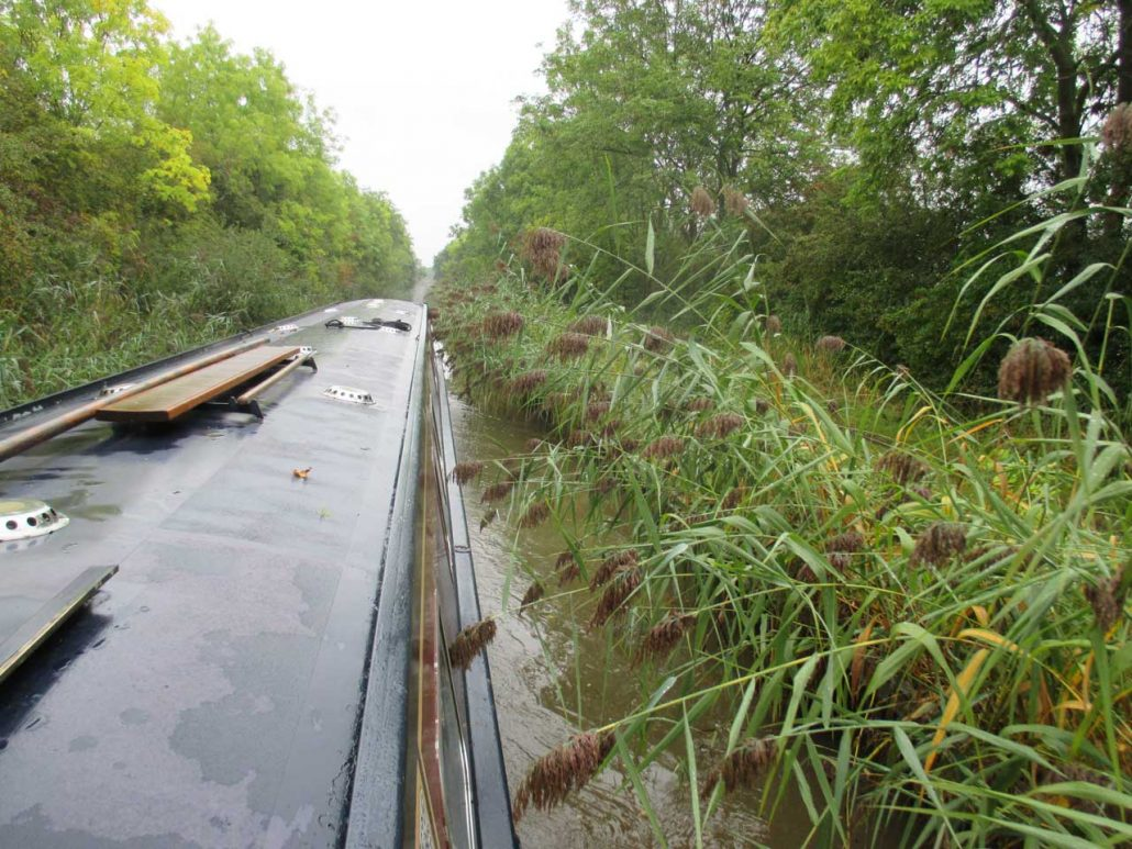 unser langes Narrowboat im zugewachsenen Kanal