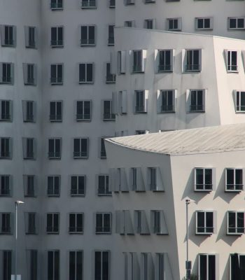 Gehry weiß