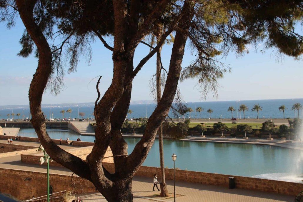 See vor der Kathedrale von Palma