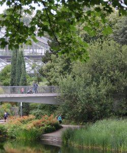 Planten un Blomen, die grüne Lunge in Hamburg