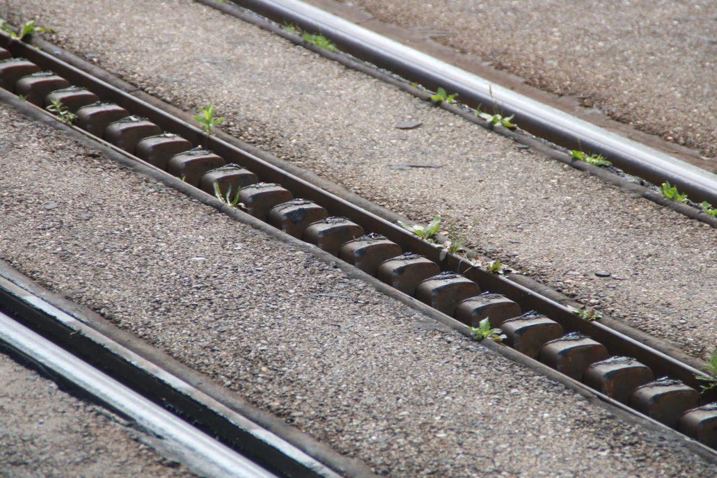 Schienen der Zahnradbahn Zacke