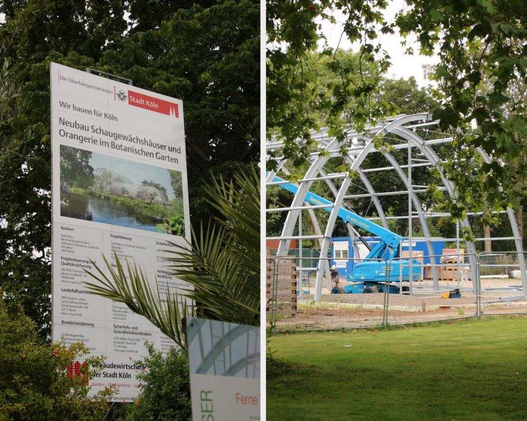 Neubau der Gewächshäuser in der Flora Köln