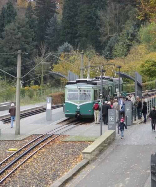 historische Tram am Drachenfels